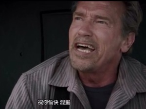 "zhu ni yu kuai hun dan! In this action movie the phrase ""have a nice day, asshole!"" is translated as ""wish you happy, confused egg!"""